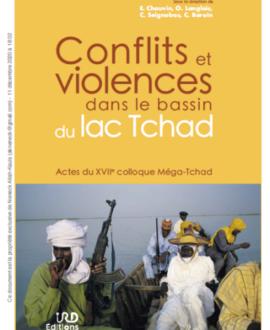 Conflits et violences dans le bassin du lac Tchad: Actes du XVIIe colloque Méga-Tchad
