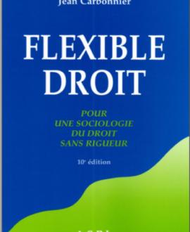 Flexible Droit, pour une sociologie du droit sans rigueur 10e édition