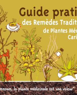 Guide pratique des remèdes traditionnels des plantes Médicinales caribéennes