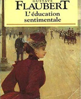 L'éducation sentimentale : histoire d'un jeune homme