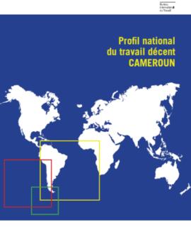 Profil national du travail décent Cameroun