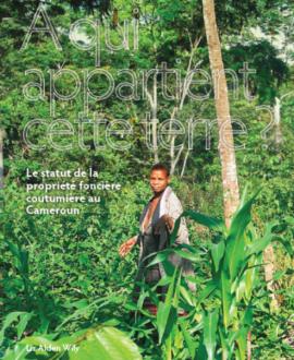 A qui appartient cette terre? Le statut de la propriété foncière coutumière au Cameroun