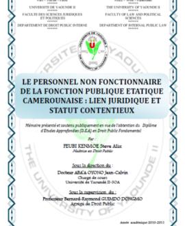 Le personnel non fonctionnaire de la fonction publique étatique camerounaise : Lien juridique et statut contentieux