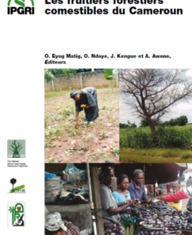 Les fruitiers forestiers comestibles du Cameroun